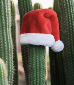 Het laatste kerstdiner